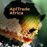 apitrade-africa-logo