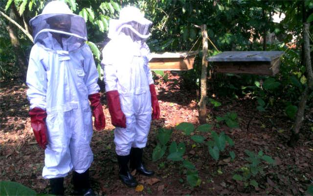 deafnet-beekeeping-in-uganda