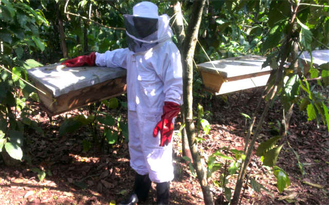 deafnet-beekeeping-in-uganda2
